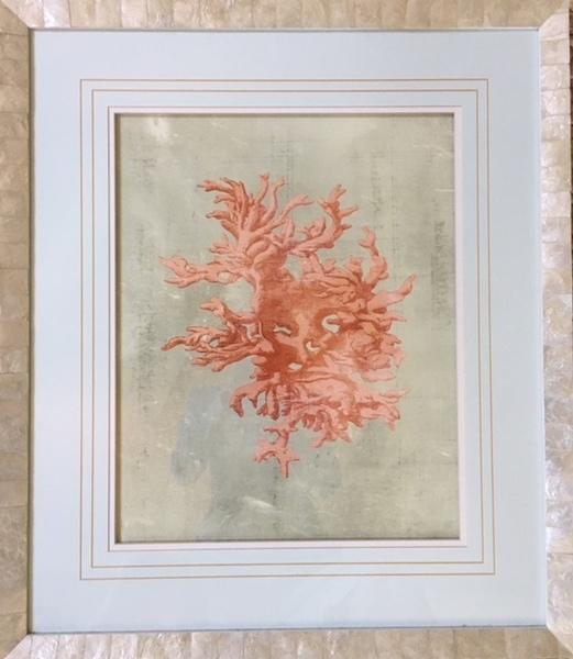 Coral Print in Larson-Juhl Capriz Shell Frame