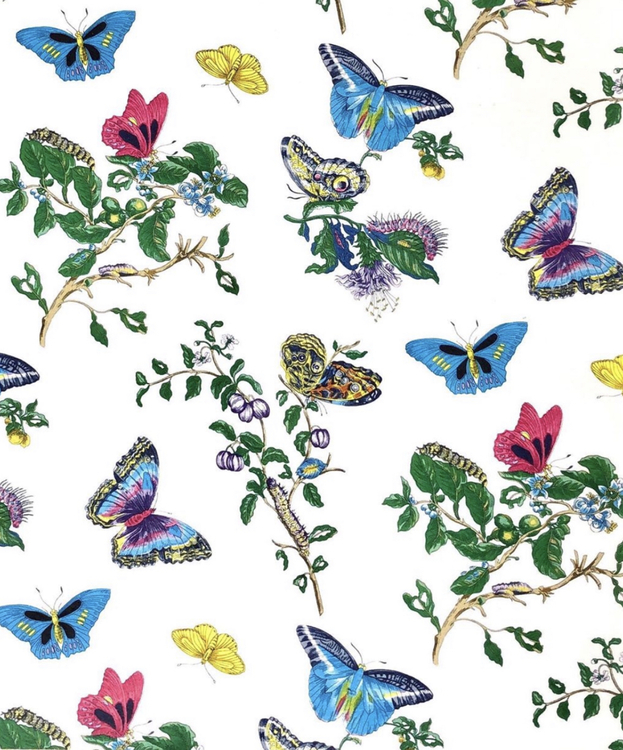 Butterflies are Free